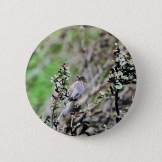 Bushtit 6 Cm Round Badge