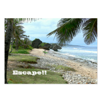 BUSINESS CARD, TRAVEL AGENTS, ISLANDS, PHOTO. PACK OF CHUBBY BUSINESS CARDS