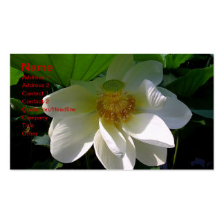 Business Card with delicate white Lotus Flower