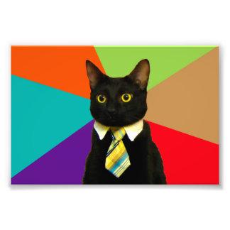 business cat - black cat photo print
