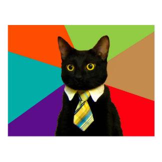 business cat - black cat postcard