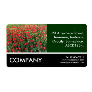 Business Photo - Bed of Red Tulips Shipping Label