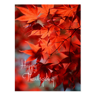 Business Thanksgiving Postcard / Red Autumn Leaves