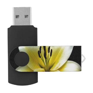 Businesses,Business,USB Stick ,Silver GB, Black Swivel USB 2.0 Flash Drive