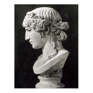 Bust of Antinous  called 'Antinous Mondragone' Postcard