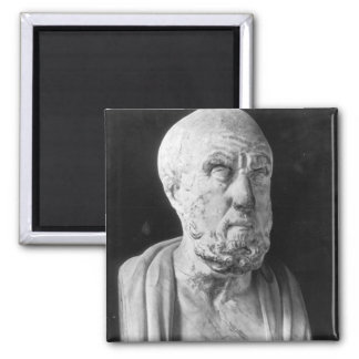 Bust of Hippocrates Square Magnet