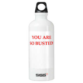BUSTED SIGG TRAVELLER 0.6L WATER BOTTLE