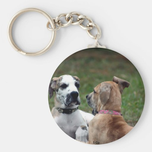 buster and jade 3 key chains