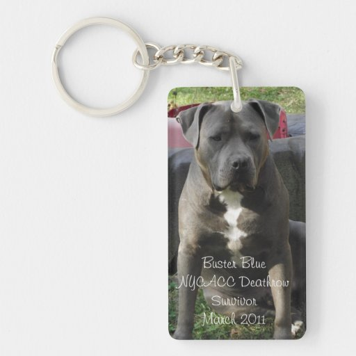 Buster Blue Rectangle KeyChain