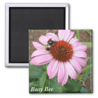 Busy Bee Fridge Magnets