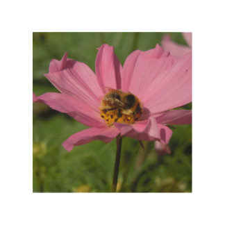 Busy Bee on Cosmo Wood Wall Art