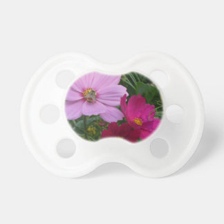 Busy Bee - Trio of Cosmos Pacifiers