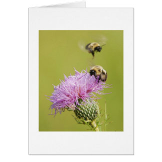 Busy Bees Stationery Note Card