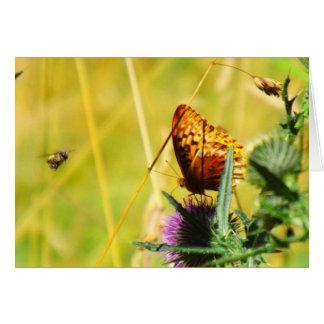 Busy Meadow Card