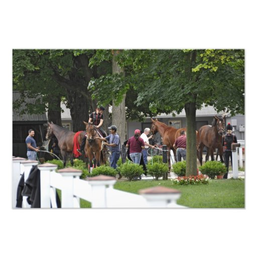 Busy Morning at the Phipps Barn Art Photo