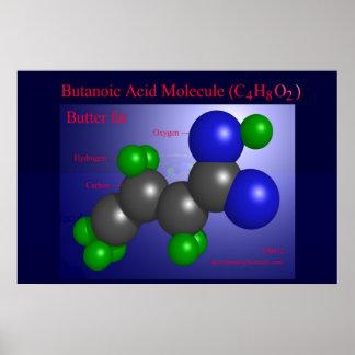 Butanoic Acid Molecule (print)