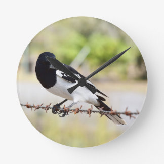 BUTCHER BIRD RURAL QUEENSLAND AUSTRALIA WALLCLOCK