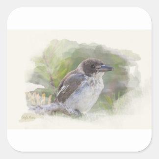 Butcher bird square sticker
