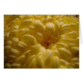 Butter flower card