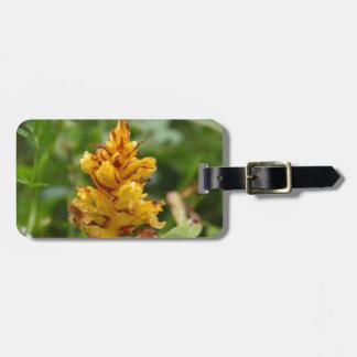 Butterbur broom (Orobanche flava) Luggage Tag