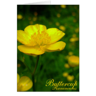 Buttercup Card Wild Flowers Custom Easter Cards