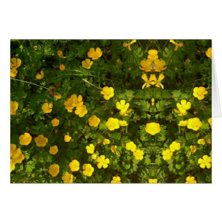 Buttercup Image Blank Card