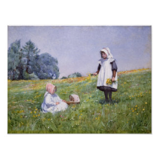 Buttercups and Daisies Poster