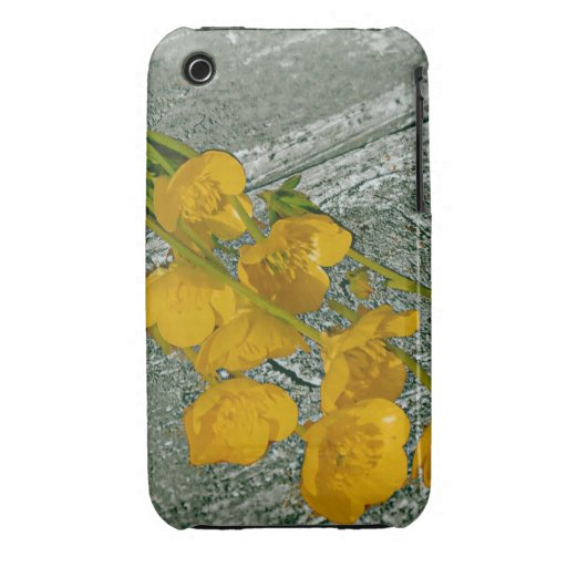 Buttercups and Old Wood Case Case-Mate iPhone 3 Cases