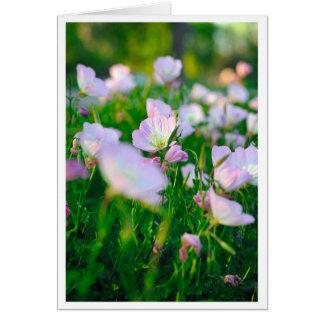 Buttercups in Summer Card