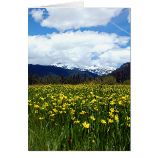 Buttercups Near Mount Lassen, Northern California Greeting Card