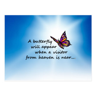Butterefly, Visitor from Heaven Postcard