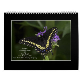 Butterflies 2018 Monthly Calendar By Tom Minutolo