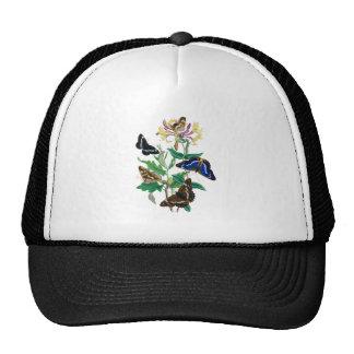 Butterflies and Honeysuckles Cap