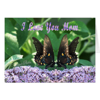 Butterflies and Mom Greeting Cards