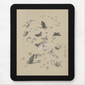 Butterflies and moths mouse pad