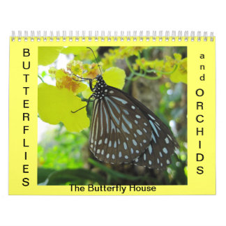 Butterflies and Orchids Calendars