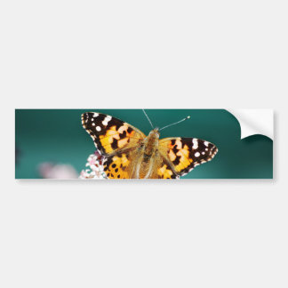 Butterflies are free bumper stickers