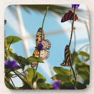 Butterflies Coasters