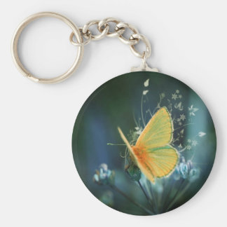 butterflies colours of rainbow key ring