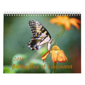 Butterflies & Flowers of Louisiana Calendar