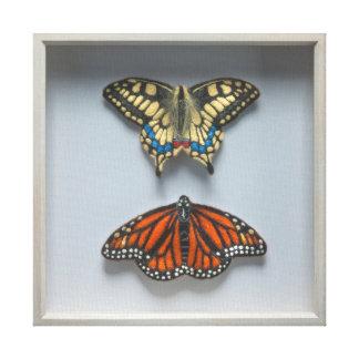 Butterflies 'in a frame' Entomology Canvas Canvas Print