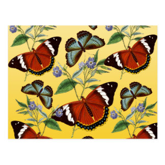 butterflies mix yellow postcard