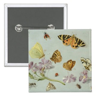 Butterflies moths and other insects buttons