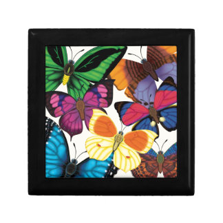 Butterflies of the World Gift Box