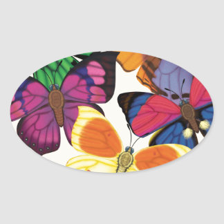 Butterflies of the World Oval Sticker