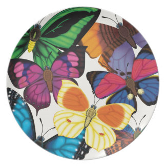 Butterflies of the World Plate