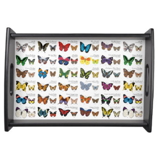 Butterflies of the World Serving Tray