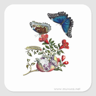 Butterflies on pomegranate square sticker