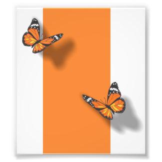 Butterflies Art Photo