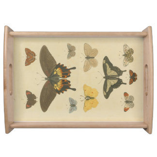 Butterflies Plate 1, 1785 Tray
